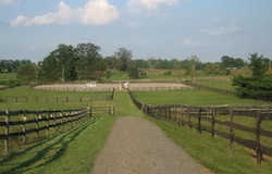 Outdoor Riding Ring Forecast Farms