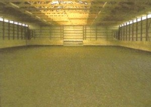 Forecast Farms Indoor Riding Ring